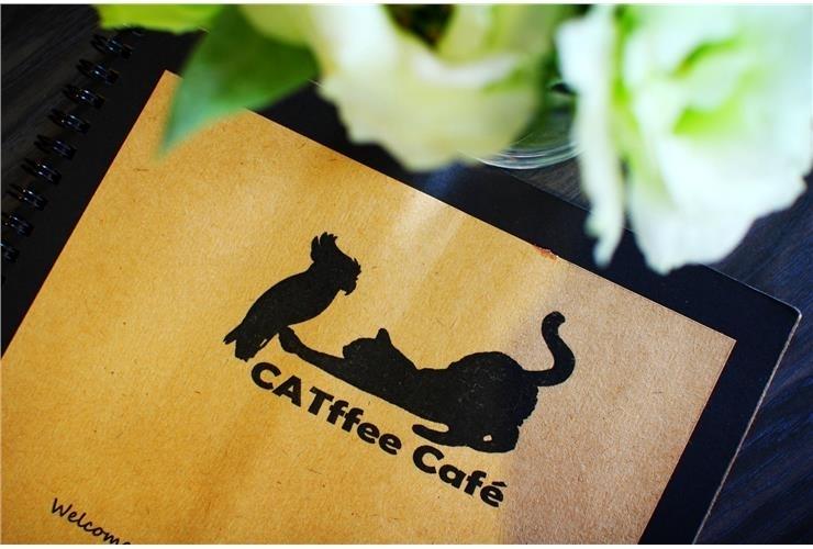 淡水 新生街 貓肥咖啡廳 招牌視覺類