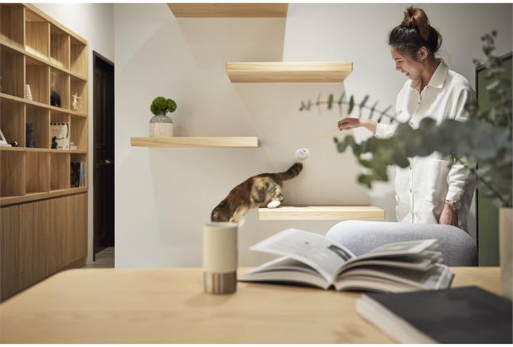 Happy Cat Cozy Home