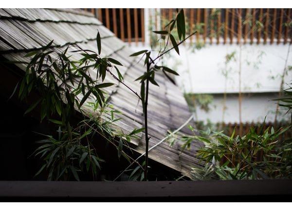 室內設計-庭院11